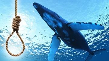 Mavi balina kimleri hedef alıyor?